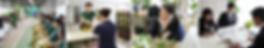 グリーンコーディネート、プロのメンテナンス、貸し木、貸し植木、観葉植物レンタル