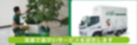 清潔で素早いサービスを提供 デパート植物レンタル