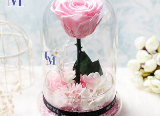 Preserved Flowers Single Standing Pink 永生花/保鮮花