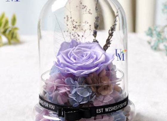 Preserved Flowers Rose with Hydrangea