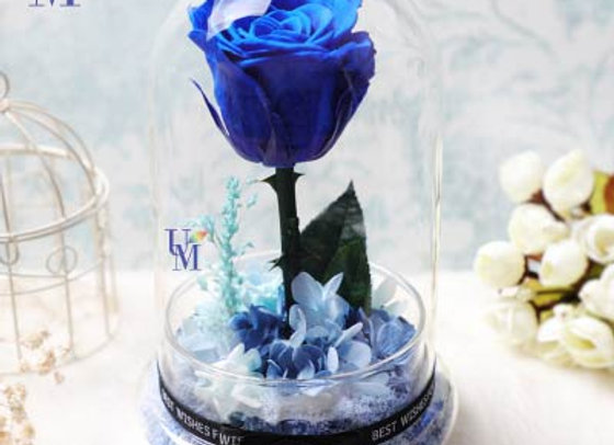 Preserved Flowers Single Standing Blue Rose