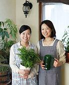 Professional florists DIY upgraded servi