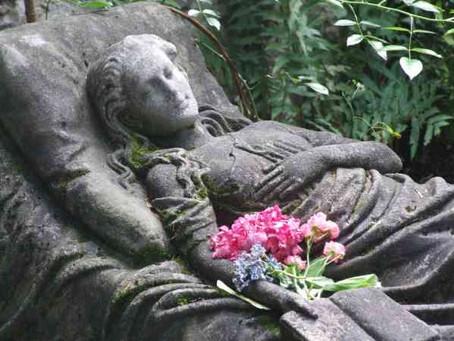 卡洛琳之墓的神祕鮮花的故事