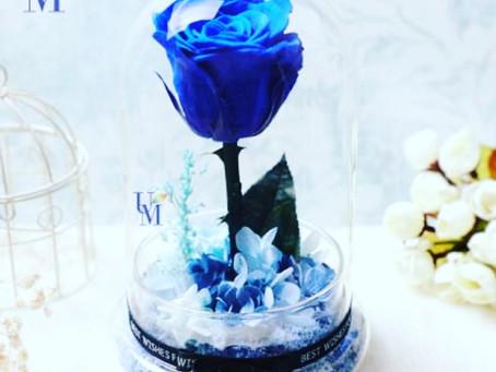 ♡羽美花藝♡保鮮花系列之「藍色妖姬」♡ Preserved Roses in Blue