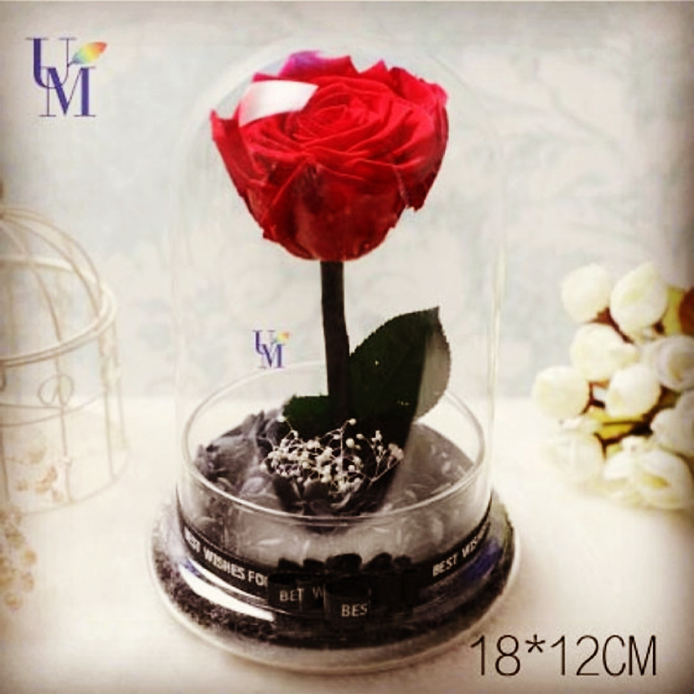 Red rose preserved flowers in full glass