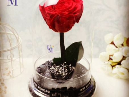 ♡umatefloral♡Preserved Flowers Collection♡You are the one.