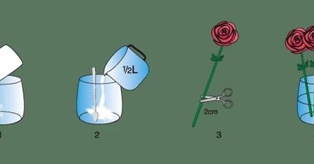 鮮花如何保鮮,才可延長花期?            How to keep the bouquet last longer?