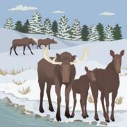 Moose_Exhibit_Winter_Mural_111219-01.jpg