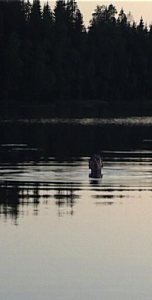 CALLING lake.jpg