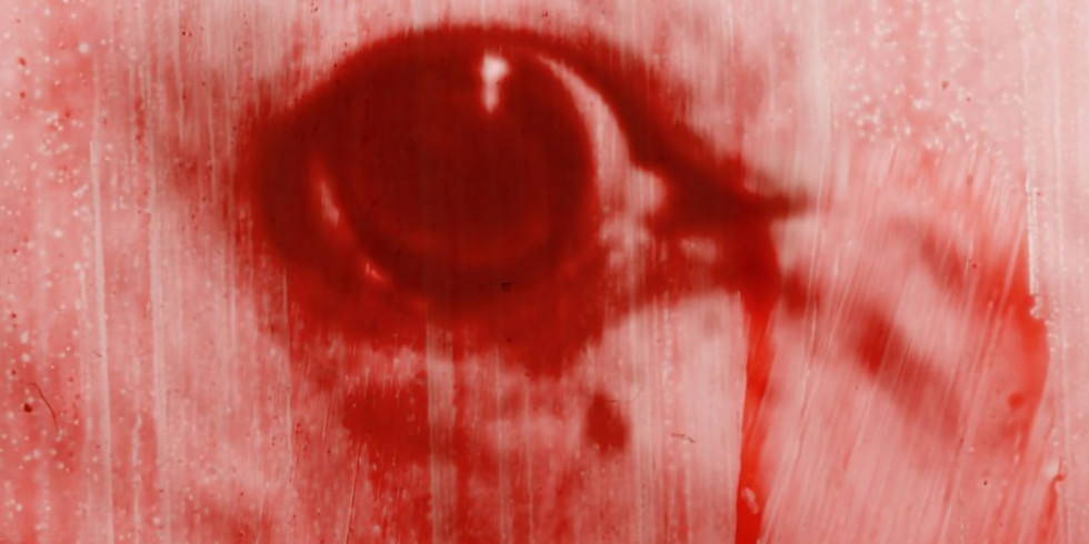 FILM : I am Half Sick of Shadows (CINECITY)