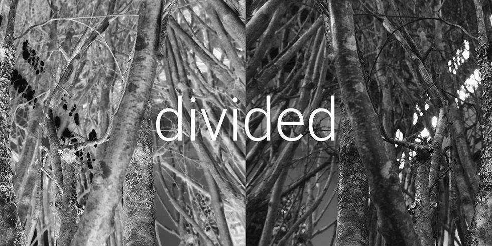 ONLINE WORKSHOP: Divided - An evening of drawing, performance & music