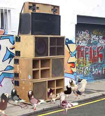 pigeondealers-364x400.jpg