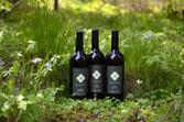 Award winning Bordeaux style Wines