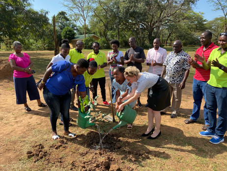 Xsabo staff and guests plant a tree at the end of their Annual Retreat at Chobe Safari Lodge.