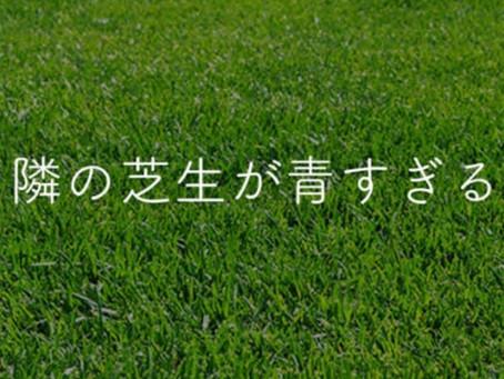 隣の芝スカイブルー