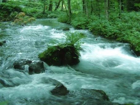 流れる水は腐らず。