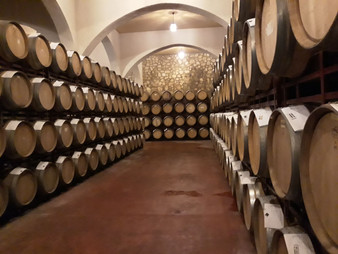 Vinhos Orgânicos da bodega Enguera