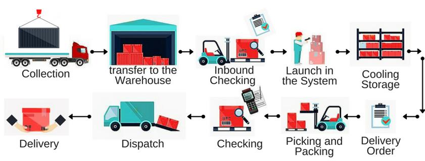 etapas da importacao e distribuição