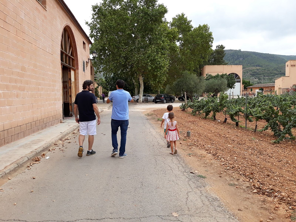 enoturismo, vinho, wine, wineturism