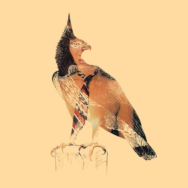 DirtyBird3.jpg
