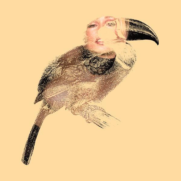 DirtyBird11.jpg