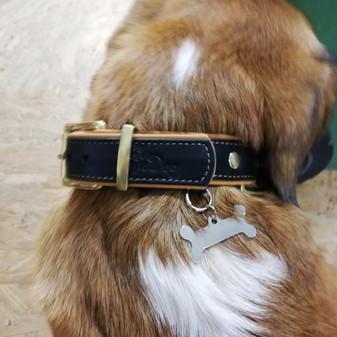 Kutya nyakörv saját logóval