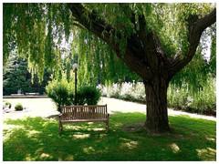 our parc
