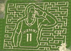 Agricenter Corn Maze