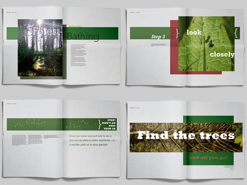 Major Design Book 3 Spreads