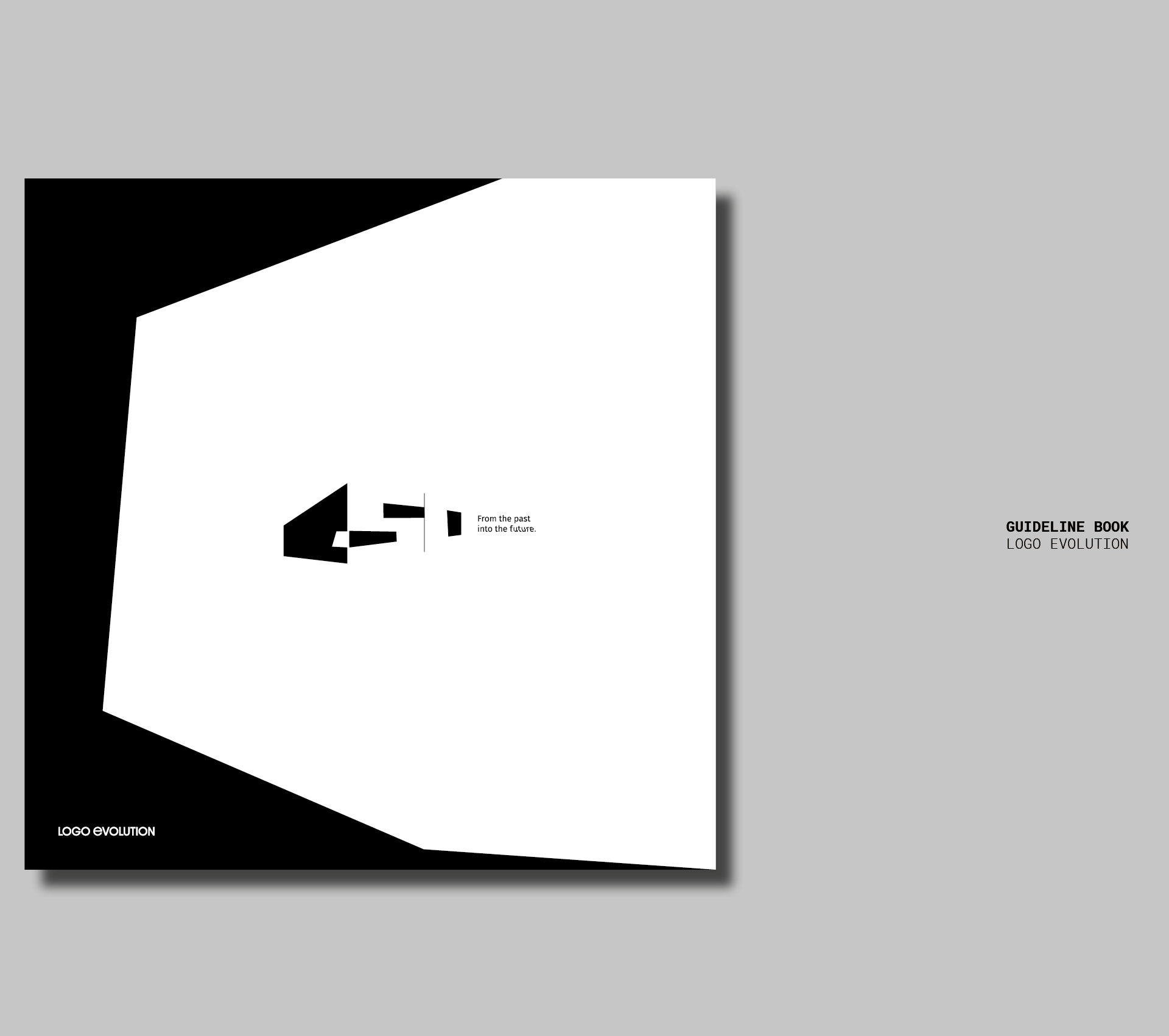 Designing Brand Identity  #50