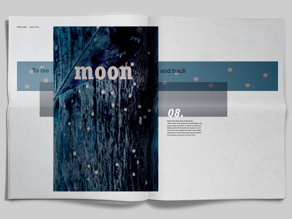 Major Design Book 2 Spread