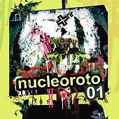 nucleoroto.jpg