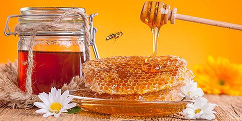 come si produce il miele