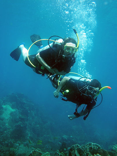 Two experienced scuba divers enjoying diving koh Tao