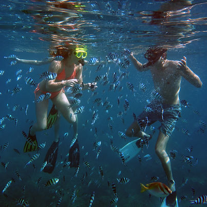 Two children snorkeling in koh Tao surrounded by many fish