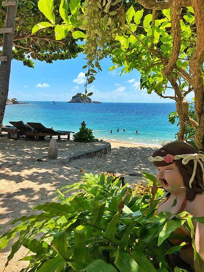 View of Shark island fromSai Daeng bay at Coral View resort in koh Tao