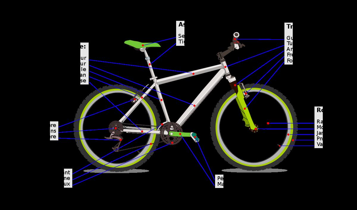 1200px-Bicycle_diagram2-fr.svg.png