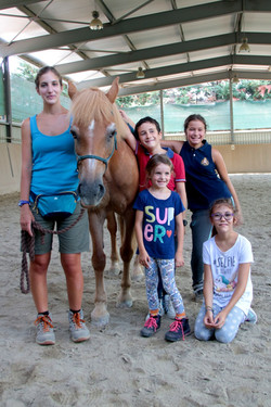 cavallo1b