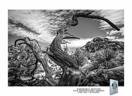 HONORABLE MENTION in 2019 Monovisions Awards Fine Art category
