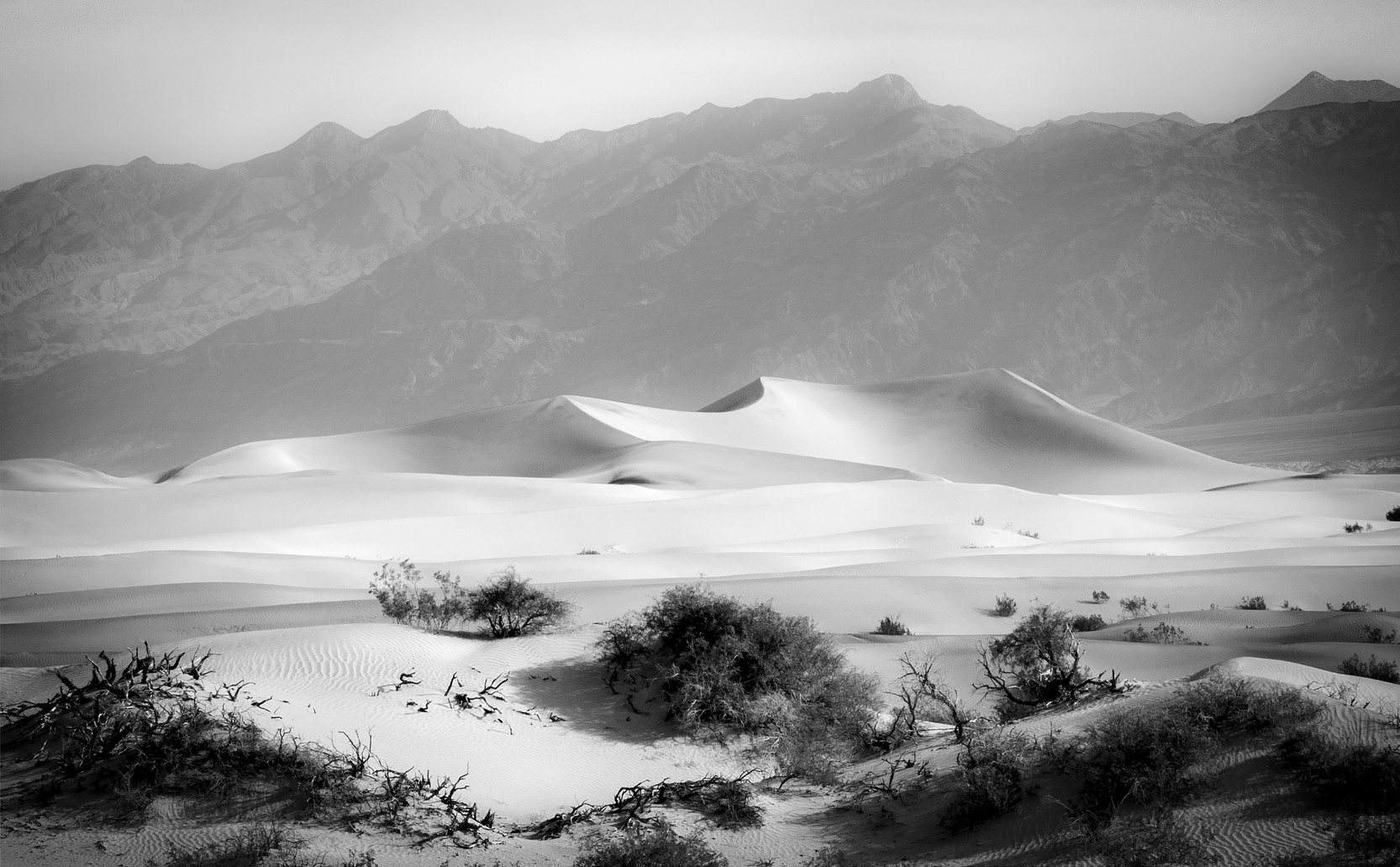 Dunes in the Morning Haze