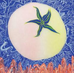 12.Orange Paradise-달 토마토Ⅲ