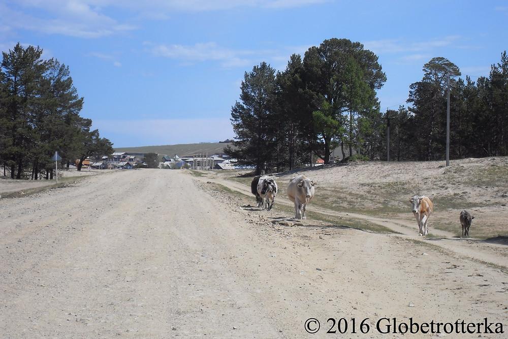 Route principale de l'île d'Okhlon. © 2016 Globetrotterka