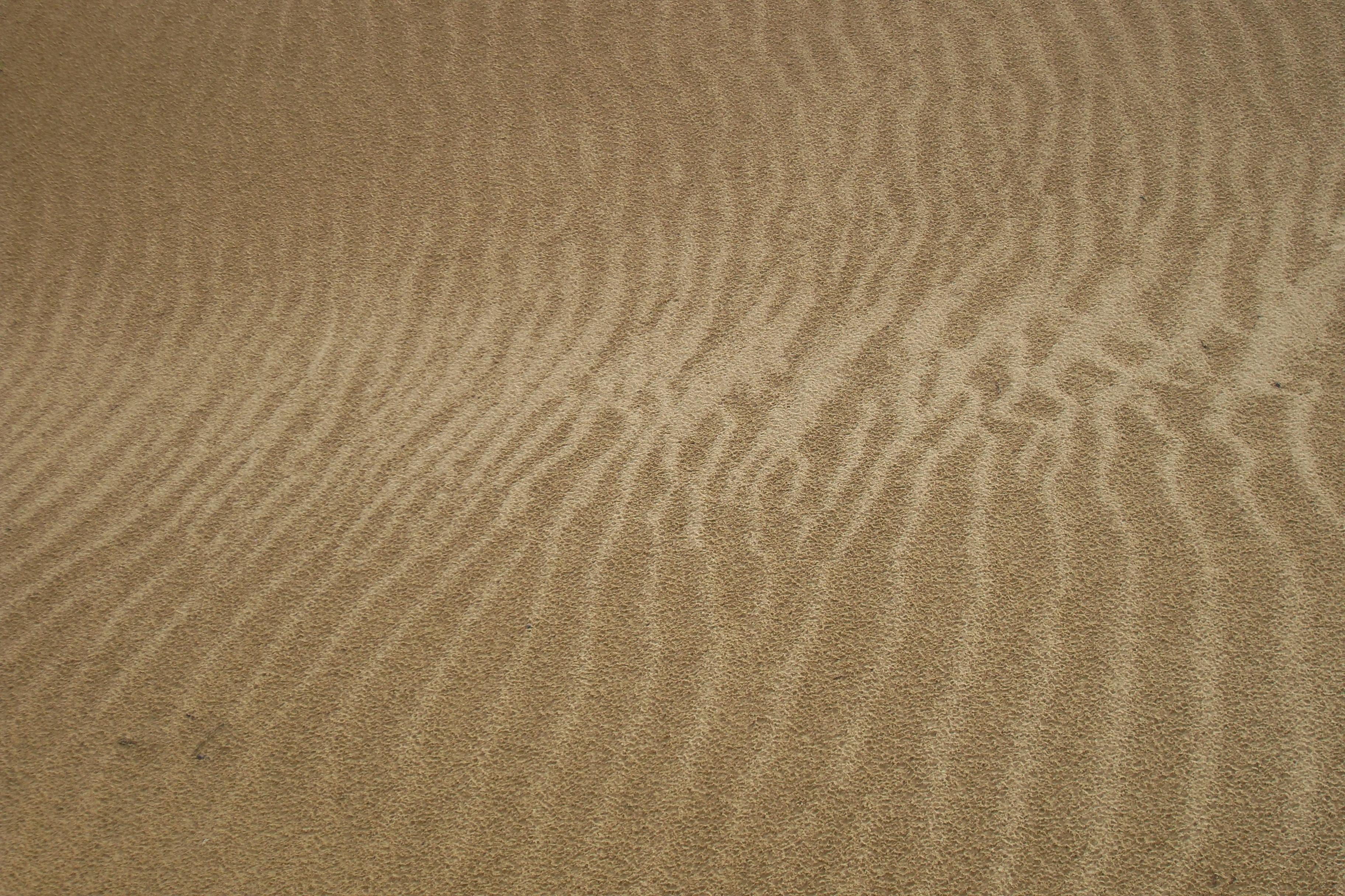 Dunes du désert de Gobi, Mongolie