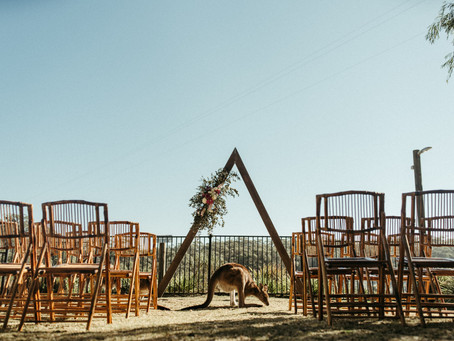 Gray Wedding Photography at The Cove