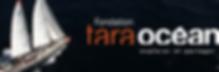 tara ocean.png