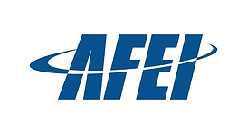 AFEL Association for Enterprise Informat