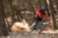 Mountain Bike Shop, Full Suspension Bikes, Enduro Bikes, Downhill Bikes