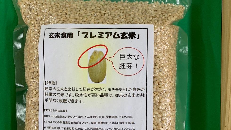 玄米食用『プレミアム玄米』 1㎏