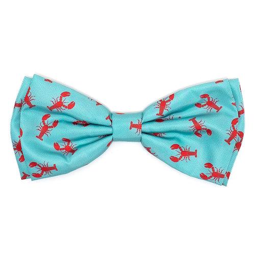Lola Nephrops Bow Tie