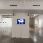 The Closer Together Things Are at SAAG, installation view